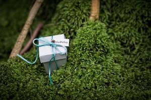 regalo sostenible