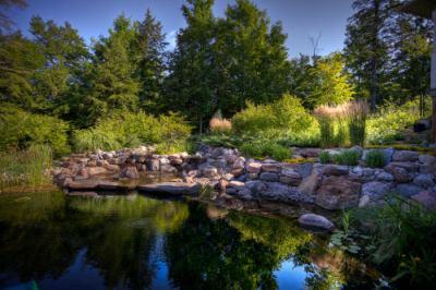 Jardín y ecología no son sinónimos