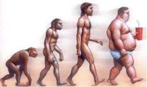 Evolución humana sobrepeso