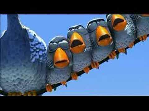 Vuelo de Pájaros – Imaginación CinemaSlow