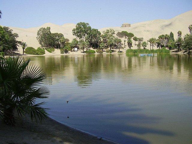 Parábola del oasis